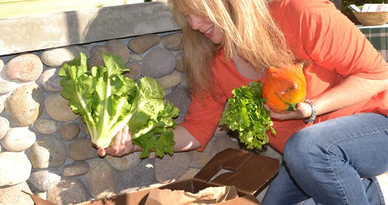 suzies farm organic csa san deigo